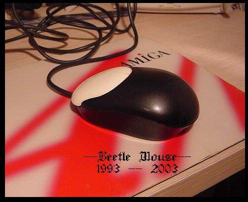 Beetle Mouse