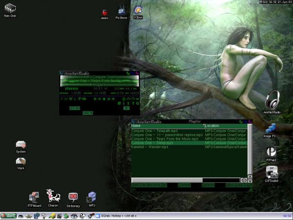 my actual Amiga WB 3.9