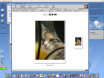 AmigaOS4 final with AmiPhoto 1.5 and WebAlbum