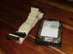 Ultra 160 SCSI Hard Disk going in my A4000D