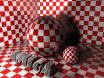 Amiga Three-D